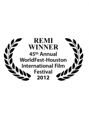 Surfing the Sonic Sky Awarded 2012 Worldfest Houston Special Jury Award